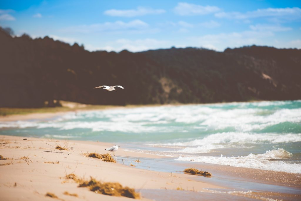 finding the best beach locations in the UK